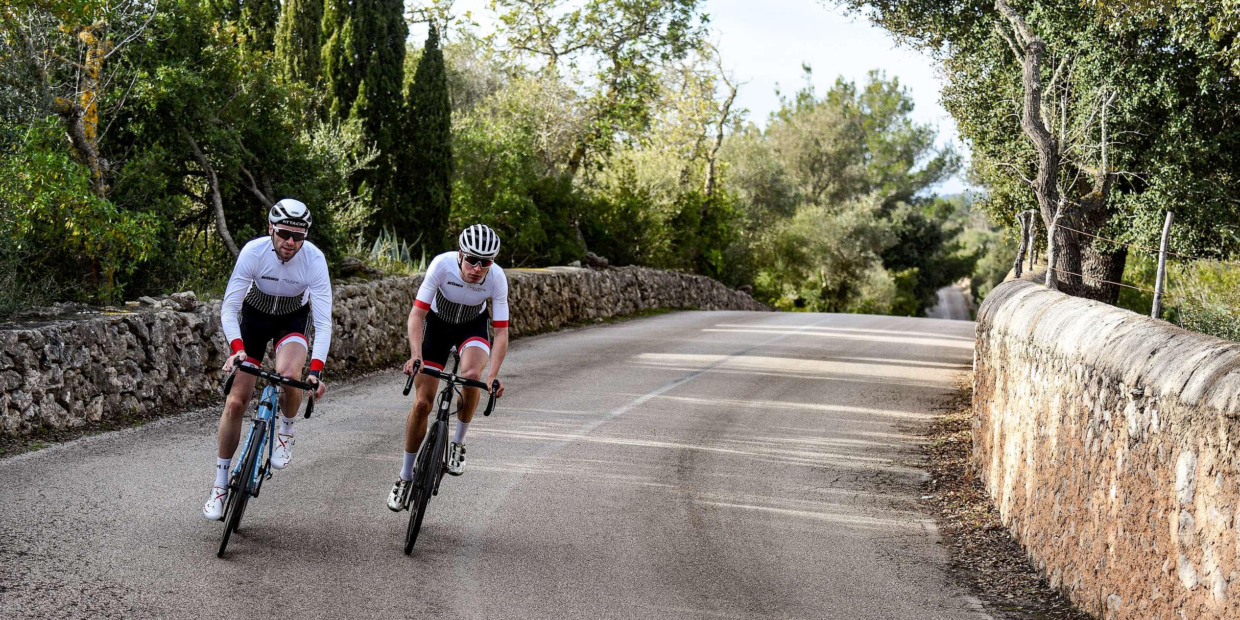 Veloco ║ Traininglager Mallorca Rennrad